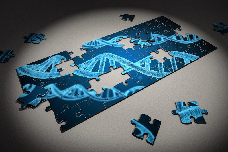 marcadores-riesgo-cardiovascular-carga-genetica-antecedentes-familiares