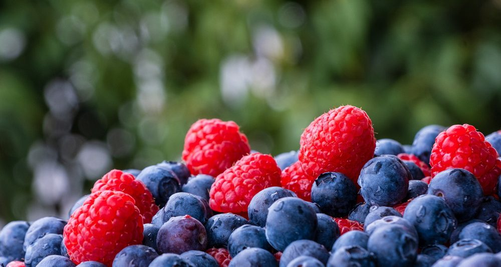 arandanos-antioxidantes