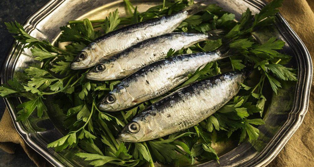 sardinas-pescado-azul